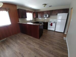 2 Bedroom Newly Renovated Main Floor of House