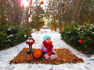 Professional Photography- Your special moments only for $ 49/Hr Kitchener / Waterloo Kitchener Area image 1