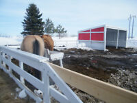 Farm & Acreage stable & corral cleaning