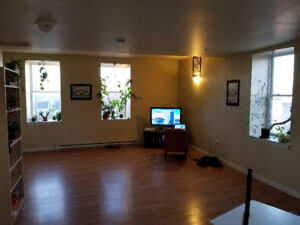 Looking for a roommate in downtown truro
