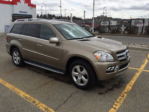 2010 Mercedes-Benz GL-Class 350 Bluetec SUV, Crossover
