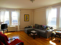 Big, sunny, conveniently located apartment overlooking park MTL