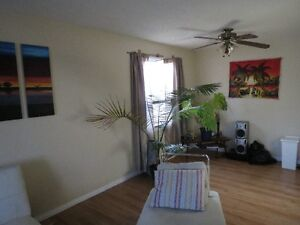 great furnished main floor BR for rent in SE everything included