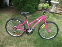 "24"" female Triumph mountainbike for a rider 5'4and under, EXCELL"