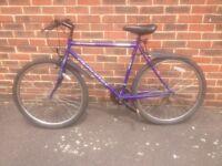 Dynamix purple bike