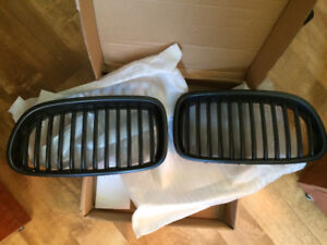 BMW Black Front Grill Inserts