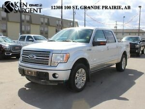 2011 Ford F-150 Platinum   - Certified - Leather Seats -  Blueto