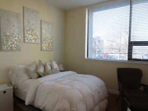 Everything Included! Modern/Renovated Bachelor on Quinpool Rd.
