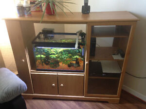 Hey I have a 20gallon fish tank and 5 gold fish need to go asap!
