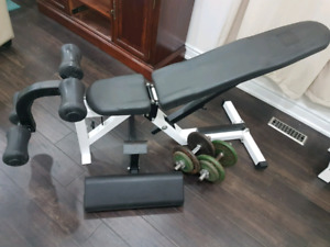 Northern lights exercise bench + dumbbells $200
