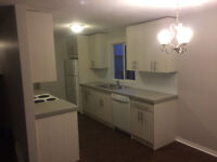IMMEDIATELY FULLY RENOVATED BUNGALOW FOR RENT SW