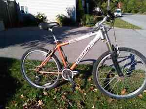 Raleigh M50