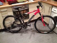 Specialized HR XC mountain bike
