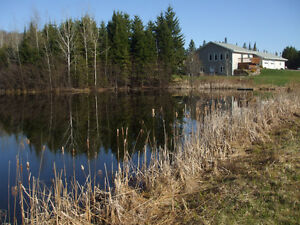 HOUSE FOR SALE IN TROUT CREEK