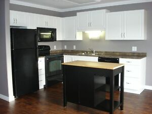 Beautiful 2 Bdrm for Senior or Prof Adult  Elena Court Sherwood