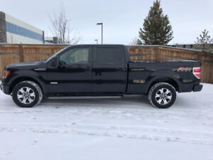 Ford F150 FX4 For Sale