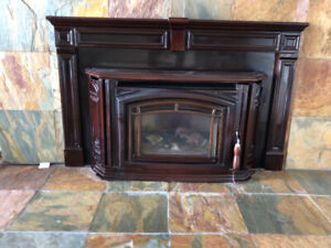 Enviro Boston 1200 Fireplace Insert