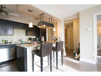 Gorgeous 1 Bedroom Condo Close to 17th