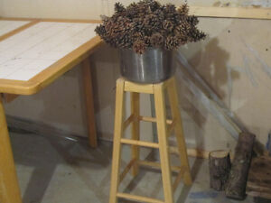 PINE CONES ON SKEWERS FOR PLANTS