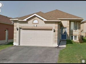Raised bunglow house on larkin dr. For rent from Sep 1st. 2016