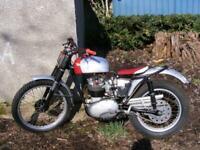 BSA C15T trails 250 1966 classic British trials iron barn find project 1960,s