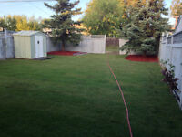 SOIL & SOD INSTALLATION and landscaping