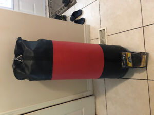 BRAND NEW 70lb punching bag with BRAND NEW Size L PROGRYP GLOVES