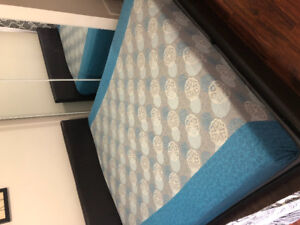 King Mattress with bed frame