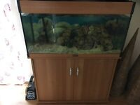 AQUA ONE 3ft tank For sale (BARGAIN)