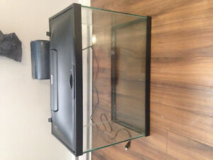 20 gallon Fish tank and supplies