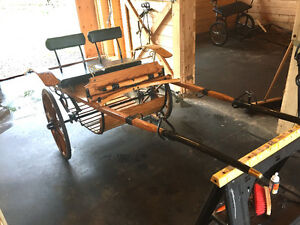 Miniature horse show cart