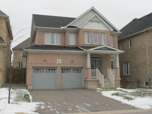 Newly renovated basement apt for rent in Richmond Hill