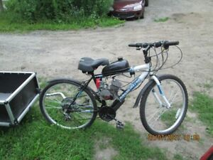 Motorized Bike with Trailer For Sale