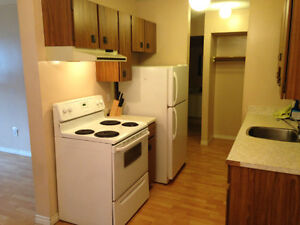 Downtown condo in Oliver, parking and utilities included!