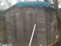 8ft x 12ft SHED - FREE to someone to dismantle and collect