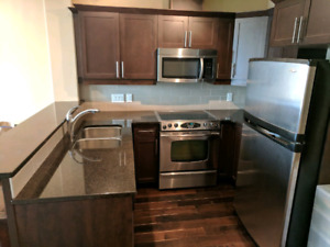 Luxury Downtown One Bedroom and One Den Condo