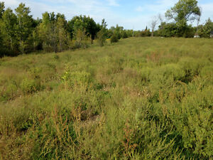 Estate Lot with Views of Trent River