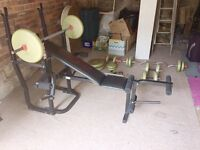 Weider Bench, Frame and Weights