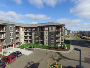 Brand New 2 Bedroom 2 Full Bath and a Large Den Condo