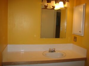 Nice 2 bedroom townhouse style on two levels in Radisson Heights