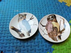 Vintage Retro Bird wildlife owls Crown Staffordshire China plates
