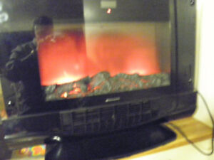 ELECTRIC FIREPLACE BIONAIRE!
