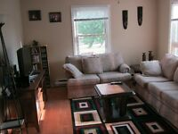 Roommate Wanted (Dieppe Blvd. Area)