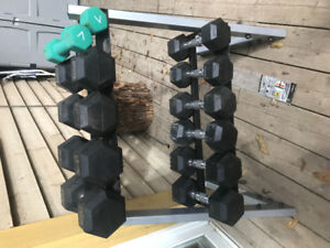 Poids hex dumbell 10-30 lbs avec support