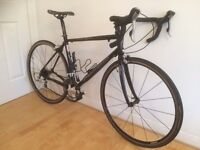 Schwinn Fastback Ltd Carbon Fibre Road Bike