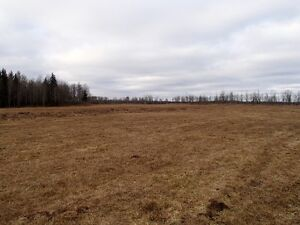 UNRESERVED PUBLIC REAL ESTATE AUCTION - THORNHILD, AB