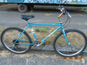 Norco Bigfoot Mountain Bike 4130