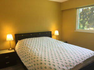 Furnished bedroom in Burnaby, ideal for BCIT/Metrotown student