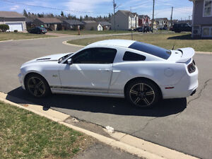2014 Ford Mustang GT/CS Coupe (2 door) RARE!!!!!!