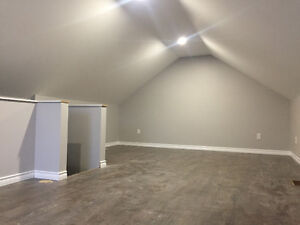Newly Renovated 2 bedroom for rent (Everything brand new)
